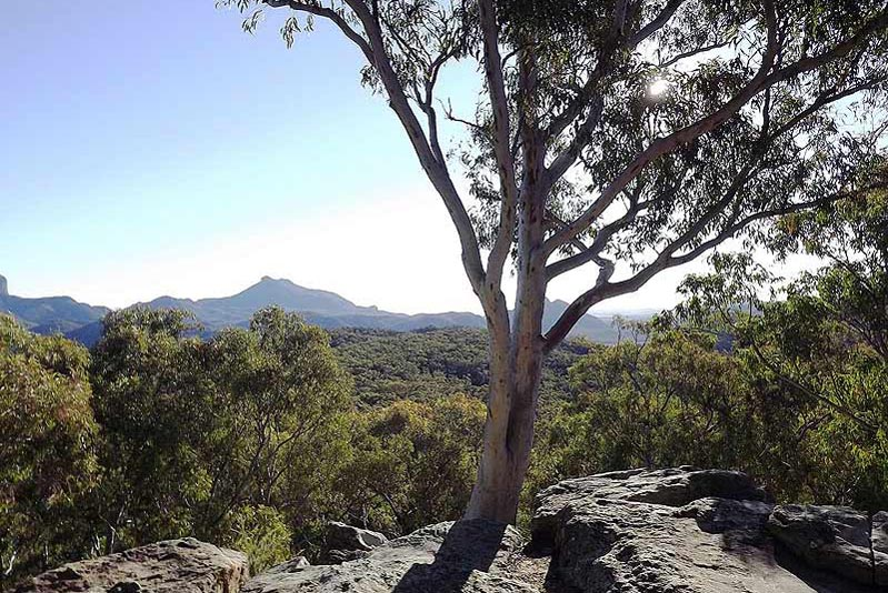 White Gums Lookout