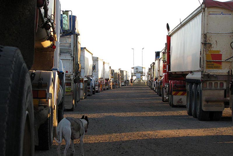 Coonamble Trucks lined up at weighbridge